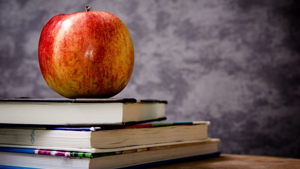 United States Suffering Nationwide Teacher Shortage – The Mountain ...